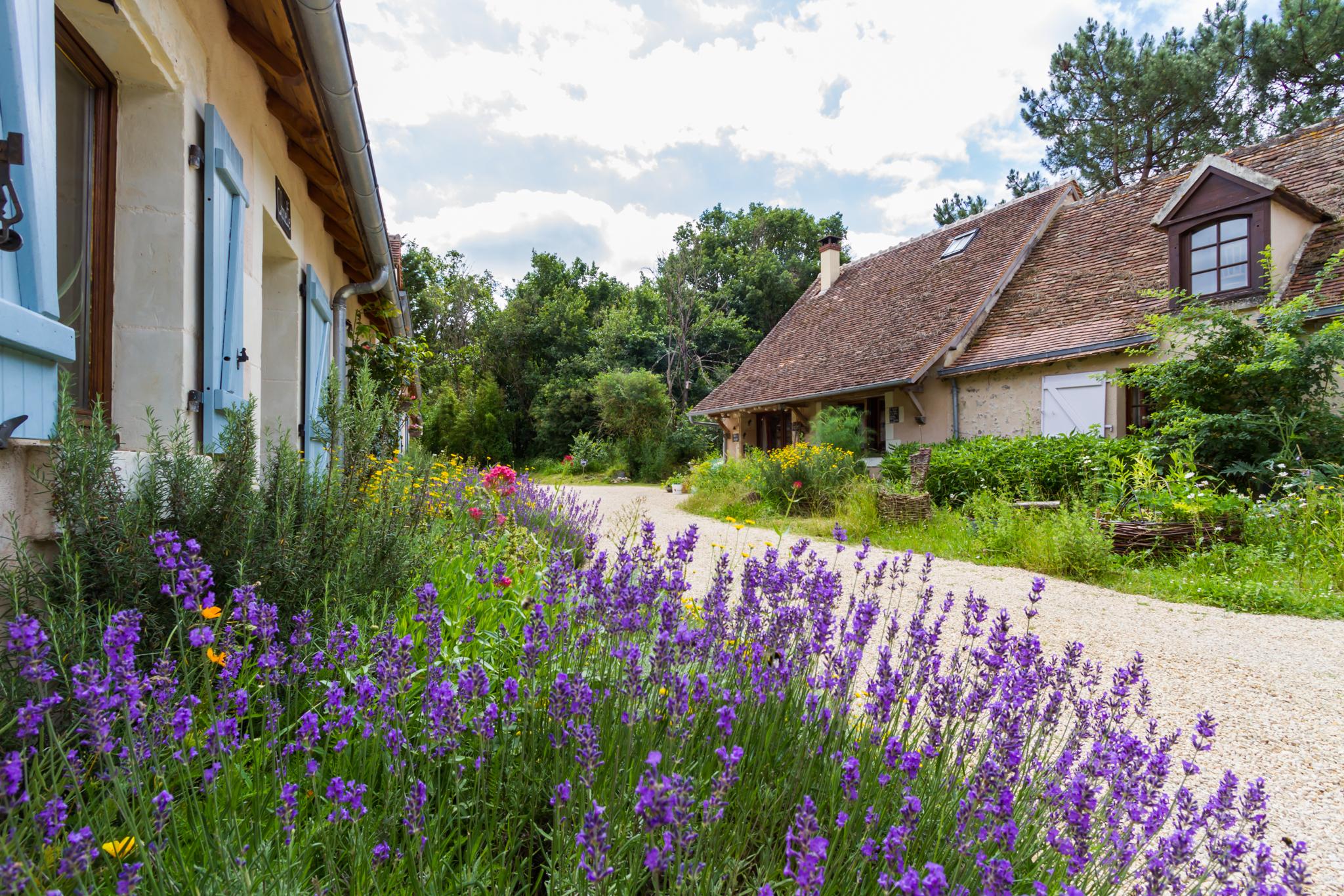 Brenne & Berry in de La Brenne in Frankrijk. Foto is gemaakt door Leo Deknatel